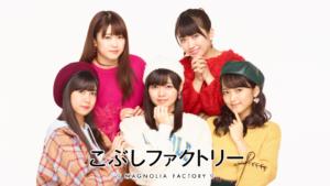 こぶしファクトリー ライブツアー2018 ~SHINE!こぶし魂!~
